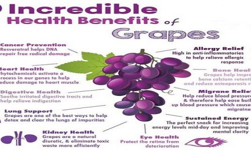 Benefits of grapes for weight loss