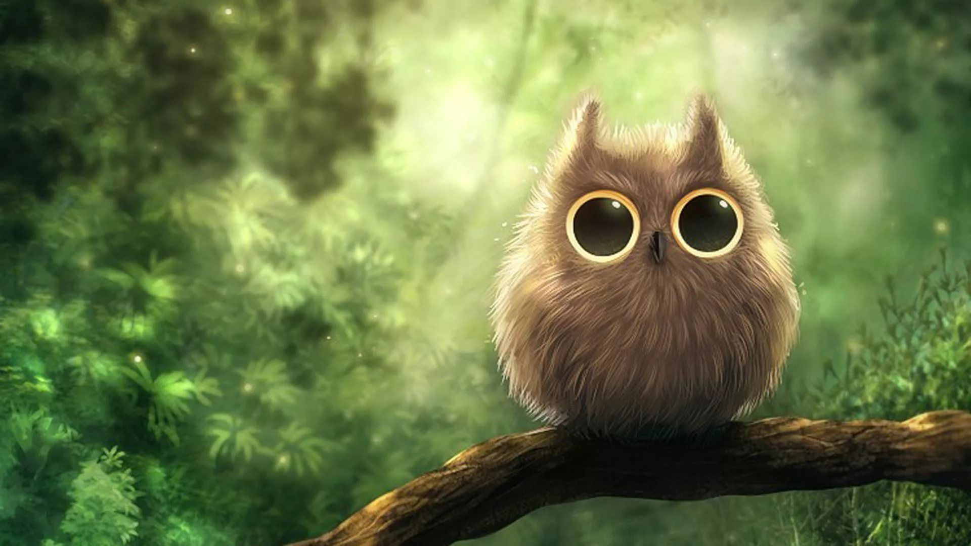 cute wallpapers free download for laptop